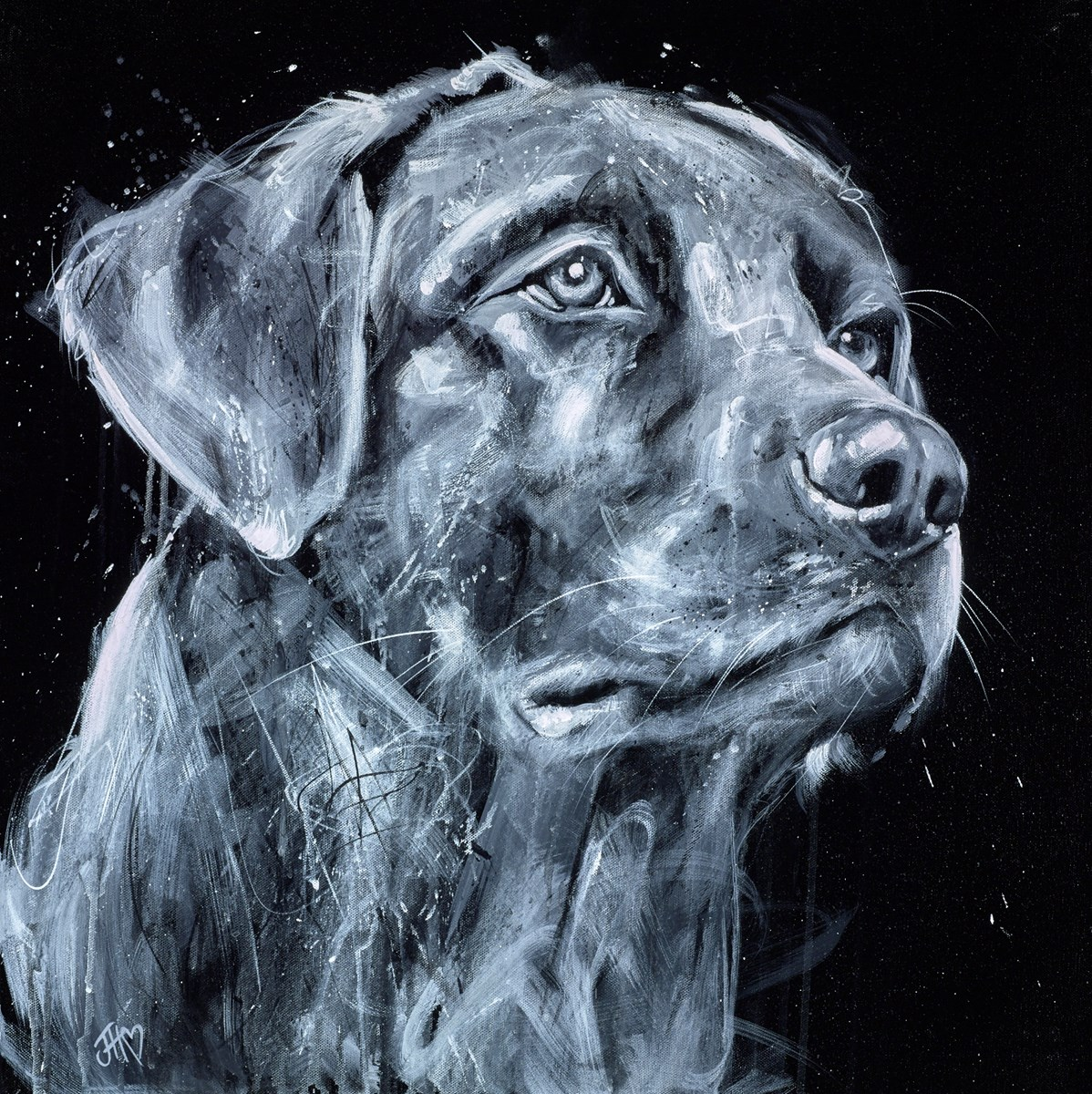 Classic Labrador by jennifer hogwood -  sized 24x24 inches. Available from Whitewall Galleries